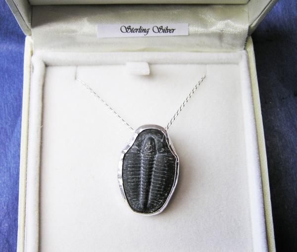 Silver set trilobite necklace silver set trilobte silver set trilobite necklace mozeypictures Image collections